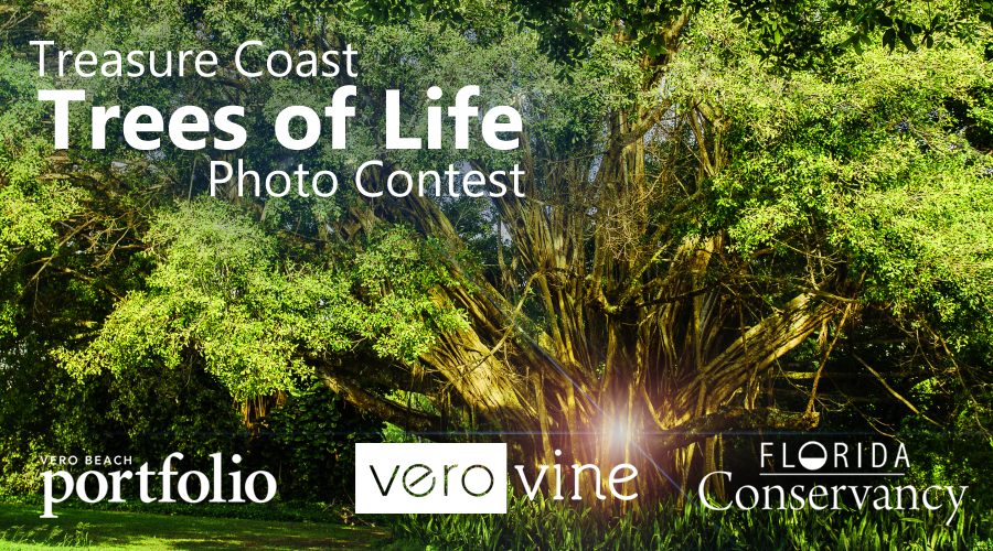 Treasure Coast Trees of Life Photo Contest