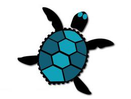 Sea Turtle Real Estate